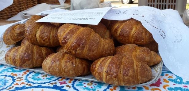 Croissant sul banco di Ciona